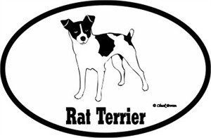 Rat Terrier Bumper Sticker Euro