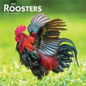 Roosters Calendar 2015