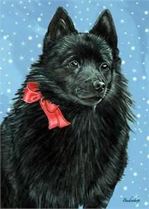 Schipperke Christmas Cards
