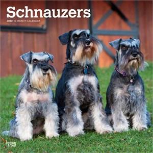 Schnauzers Non Cropped Calendar 2015
