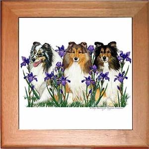 Shetland Sheepdog Trivet