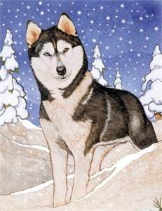 Siberian Husky Christmas Cards