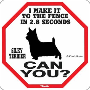 Silky Terrier 2.8 Seconds Sign