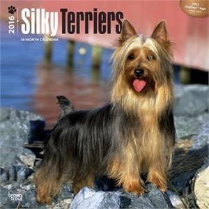 Silky Terriers Calendar 2015