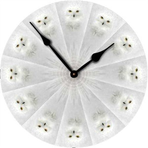 Snow Owl Wall Clock