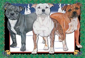 Staffordshire Bull Terrier Christmas Cards