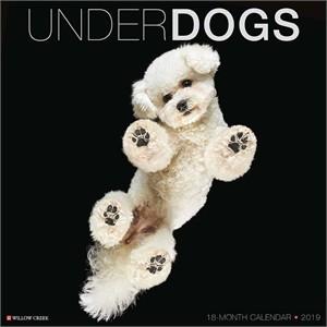Underwater Dogs Calendar 2015