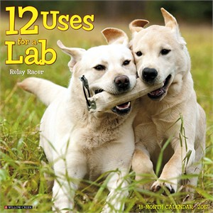 12 Uses for Labs Calendar 2015