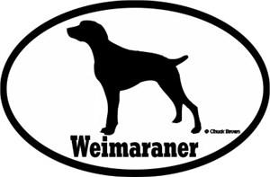 Weimaraner Bumper Sticker Euro