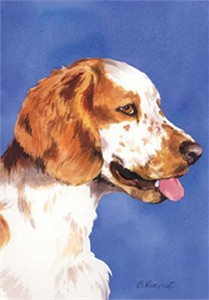 Welsh Springer Spaniel House Flag
