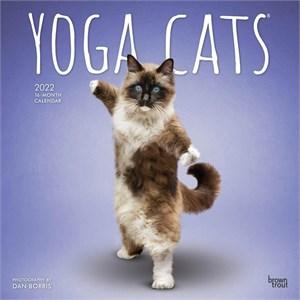 Yoga Cats Calendar 2015