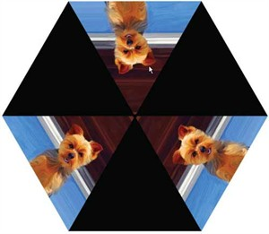 Yorkshire Terrier Umbrella